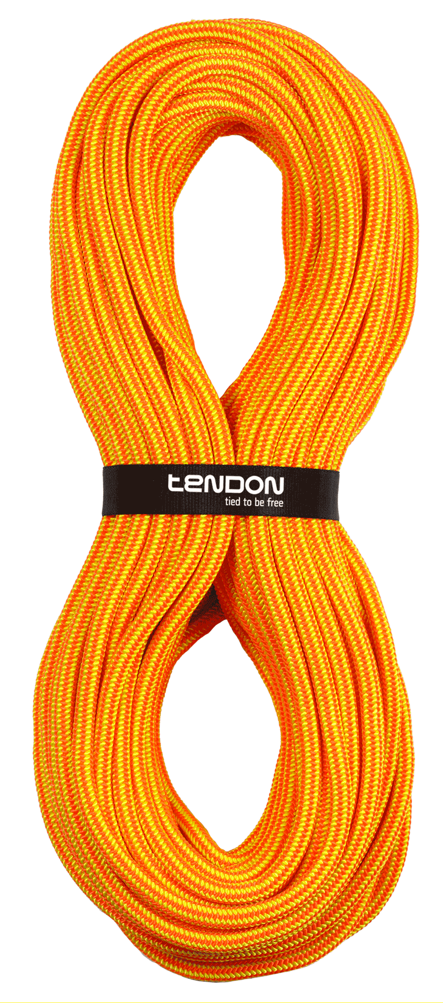 TENDON Timber EVO 11.5 - orange/yellow